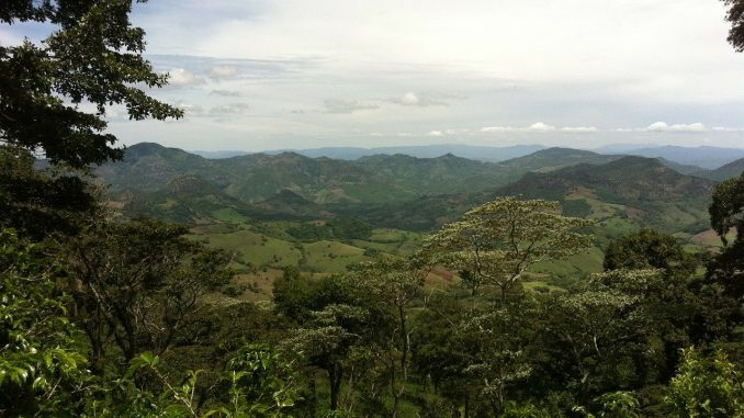 Central America will restore and protect 10 million hectares of forest